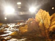 Ratgeber: Ist Ihr Auto bereit für Herbst und Winter?