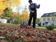 Herbst: Wer muss wann kehren? So urteilen Gerichte beim Laub