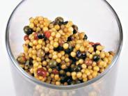 Ernährung: Senf: Nicht nur ein Nahrungsmittel für alle Fälle
