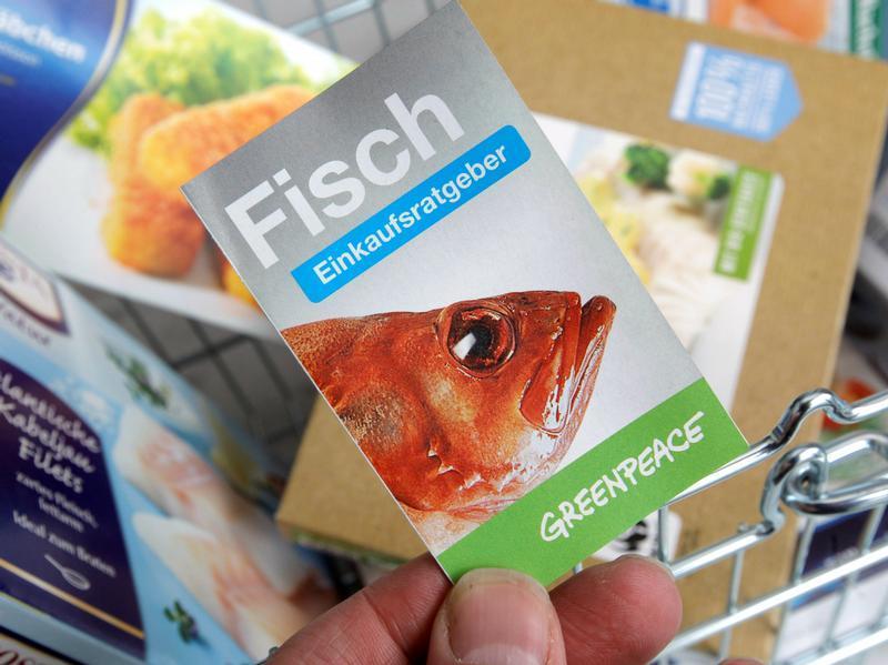 greenpeace fischratgeber 2013 diese fische kann man noch guten gewissens essen promis. Black Bedroom Furniture Sets. Home Design Ideas