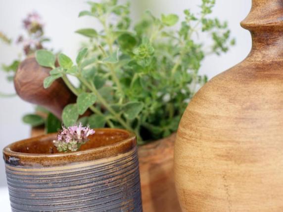 wirkungen des oregano oregano gegen kr mpfe und f r den brautschuh geld leben augsburger. Black Bedroom Furniture Sets. Home Design Ideas