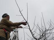 Gartenfreunde: Erst schneiden, dann pressen