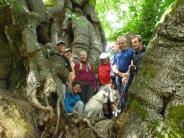 Freundeskreis Jakobswege: Hündin Lea auf dem Pilgerpfad