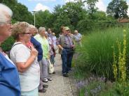 Gartenbauverein Kinsau: Auf den Spuren der Zauberpflanzen