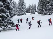 Alpenverein: Super Tag im Schnee