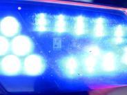 Dillingen: Polizeibeamte werden beim Nachtumzug beleidigt und attackiert