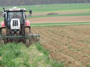 Landkreis Dillingen: Bio oder doch konventionell?