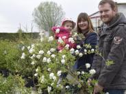 Tag der offenen Gärtnerei in Wertingen: Zuerst der Kirschbaum, dann die Kletterer