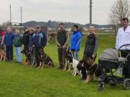 Frühjahrsprüfung: Spitzenleistungen beim Schäferhundeverein