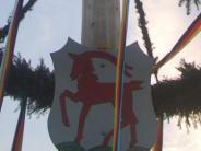 Region Wertingen: 40 Helfer hieven den Baum hoch