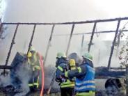 Prettelshofen: Bienenhaus brennt ab