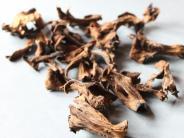 Gottmannshofen: Wolkig mit Aussicht auf Pilze