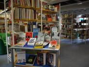 Landkreis: Was Bibliothekare im Landkreis Dillingenempfehlen