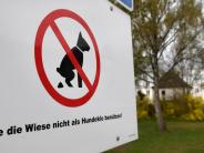 Binswangen: Hunde bekommen keine Toilette