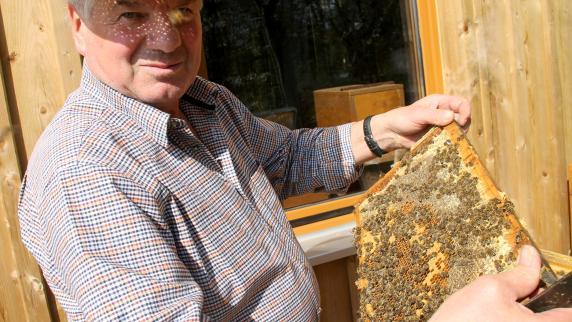 Holzheim: Bienenmarkt bei den Imkern in Holzheim