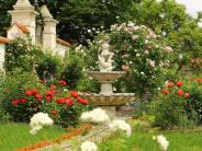 Rosenschloss Gundelfingen: Aus dem Dornröschenschlaf gerissen