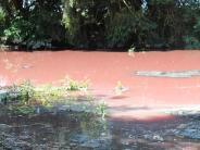 Kreis Dillingen: Plötzlich war das Wasser in Buttenwiesen rostrot