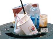 Vandalismus: Müllwerfer beschmutzen das Wertinger Freibad