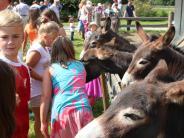 Bei uns daheim: Gemeinschaft und Gemütlichkeit in Gottmannshofen
