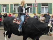 Prettelshofen: Auf dem Ochsen zur Tiersegnung
