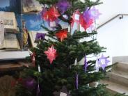 Beliebter Wunschbaum in Wertingen: Doppelt soviel Sterne wie letztes Jahr