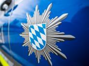 Polizeibericht: Vom Nachtumzug in die U-Haft