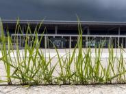 Geplante BER-Eröffnung: Berliner Flughafen Tegel soll zur BER-Eröffnung schließen