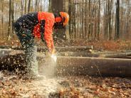 Heizen, Holz und Waldarbeiten: Im Wald selbst mit anpacken