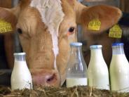 Wegfall der Milchquote: Seit Frühjahr 2015 haben über 5600 Milchbauern aufgegeben
