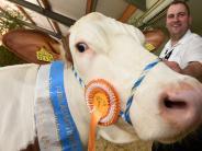 Landwirtschaft: Wer hat die schönste Kuh im Stall?