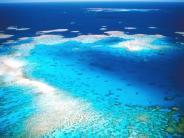 Bedrohtes Ökosystem: Great Barrier Reef soll 37,5 Milliarden Euro wert sein