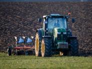 Landwirtschaft: Deutsche Bauern nach Krisenjahren wieder zuversichtlich