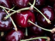 Ernteaussichten getrübt: Obstbauern rechnen mit höherenPreisen für Kirschen