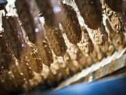 Starker Gewinanstieg: Eisgeschäft treibt Wachstum bei Unilever an