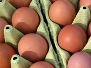 Fipronil-Eier: Skandal um Fipronil-Eier: Kunden kaufen kritischer