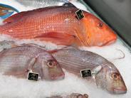 """Algentoxine: Ministerium warnt vor Fisch """"Red Snapper"""" aus Vietnam"""