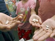 Aids: Neues Medikament Truvada soll HIV-Infektion vorbeugen