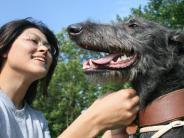 Verständigung mit Tieren: «Ei du Süßer!»: Mit Hunden sprechen Menschen wie mit Babys