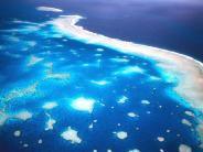 Erste Kontrollflüge: Erneut Korallenbleiche am Great Barrier Reef