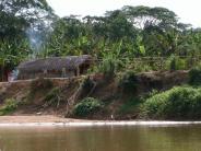 Amazonas-Ureinwohner: Amazonas-Ureinwohner haben gesündeste Arterien der Welt