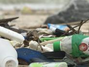 7000 Kilometern auf hoher See: Tsunami-Folge: Tiere reisten auf Plastik-Flößen nach Amerika