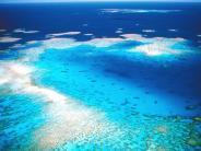 Größtes Korallenriff der Welt: Wettbewerb zur Rettung des Great Barrier Reef ausgelobt