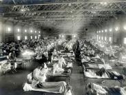 Medizin: Grippe: Istein Ausbruch wie im Jahr 1918 heute noch möglich?
